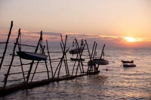 Hägende Boote in Savudrija