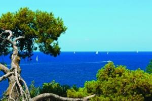 Meer und Segelboote