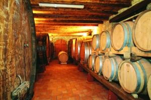 Weinland Kroatien
