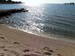Strand Polari