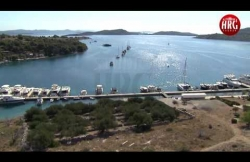 Insel Žut