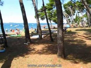 Strand Camp Pineta