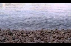 Beach Štikovica