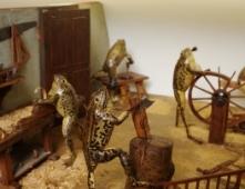 Froggyland Museum