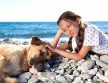 Holidays in Croatia with dog