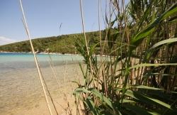 Beach Stončica Bay