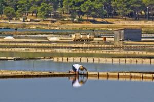 Meerwassersaline in Pag