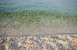 Beach Lumbrelin