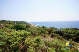 Strand Mala Kolumbarica Bucht (Kap Kamenjak)