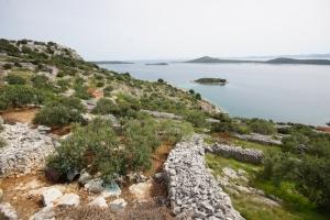Insel Pašman