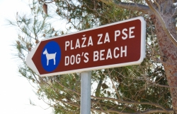Hundestrand - Punat