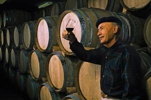 Weinkeller - Peljesac