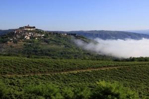 Motovun - Panorama